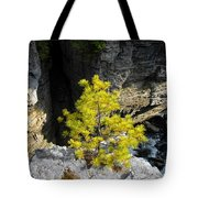 Living On The Edge Tote Bag by David Lee Thompson