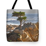 Lone Cypress - The Icon Of Pebble Beach California Tote Bag by Christine Till