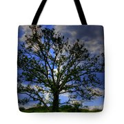 Lonely Tree Tote Bag by Kevin Hill