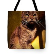 Looking at the Sun Tote Bag by Loriental Photography