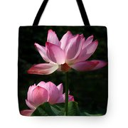 Lotus Beauties--upstaged Dl048 Tote Bag by Gerry Gantt