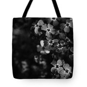 Love Lost Tote Bag by Laurie Search