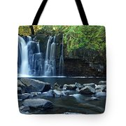 Lower Johnson Falls Tote Bag by Larry Ricker