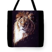 Maestro Tote Bag by Barbara Keith