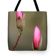 Magnbolia Bloom Tote Bag by Winston Rockwell