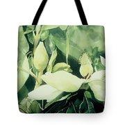 Magnolium Opus Tote Bag by Elizabeth Carr