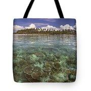 Malaysia, Mabul Island Tote Bag by Dave Fleetham - Printscapes
