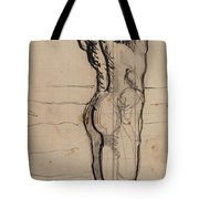Male Act   Study for the Truth Tote Bag by Ferdninand Hodler