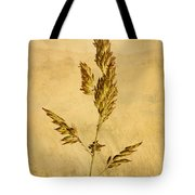 Meadow Grass Tote Bag by John Edwards