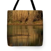 Mirror Spring 2 Tote Bag by Douglas Barnett
