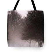 Misty Tote Bag by Linda Shafer