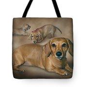 Molly Tote Bag by Barbara Hymer