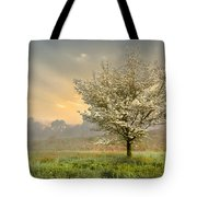 Morning Celebration Tote Bag by Debra and Dave Vanderlaan