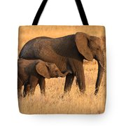 Mother And Baby Elephants Tote Bag by Adam Romanowicz