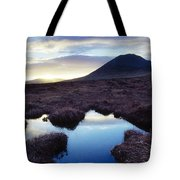 Mount Errigal, County Donegal, Ireland Tote Bag by Gareth McCormack