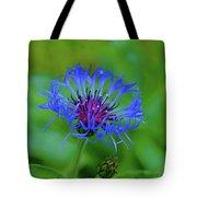 Mountain Cornflower Tote Bag by Byron Varvarigos