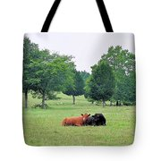 My Own True Love Tote Bag by Jan Amiss Photography