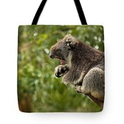 Naptime Tote Bag by Mike  Dawson