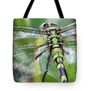 Natural Stained Glass Tote Bag by Carol Groenen