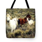 Nevada Wild Horses Tote Bag by Marty Koch