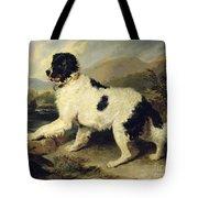 Newfoundland Dog Called Lion Tote Bag by Sir Edwin Landseer