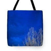 Night Sky Tote Bag by Steve Gadomski