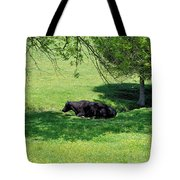 Noon Siesta Tote Bag by Jan Amiss Photography