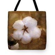 North Carolina Cotton Boll Tote Bag by Benanne Stiens