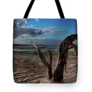 Ode To The Estuary Tote Bag by Kym Clarke