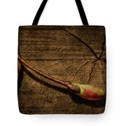 Old Meets New Tote Bag by Evelina Kremsdorf