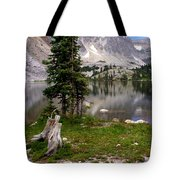 On the Snowy Mountain Loop Tote Bag by Marty Koch