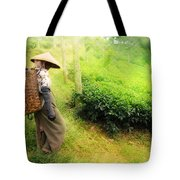 One Day In Tea Plantation  Tote Bag by Charuhas Images