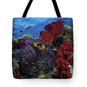 Orange-finned Clownfish And Soft Corals Tote Bag by Terry Moore