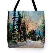 Ormstown Quebec Winter Road Tote Bag by Carole Spandau