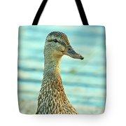 Oscar le canard Tote Bag by Aimelle