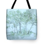 Outer Banks Tote Bag by Leah  Tomaino