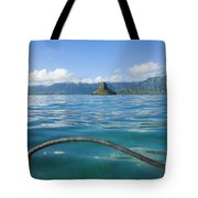 Outrigger On Ocean Tote Bag by Dana Edmunds - Printscapes