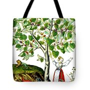 Ovids Pyramus And Thisbe Myth Tote Bag by Photo Researchers