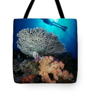 Palau, Diving Tote Bag by Dave Fleetham - Printscapes