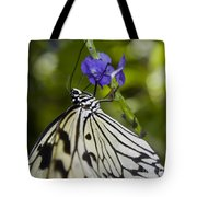 Paper Kite Butterfly Tote Bag by Heather Applegate