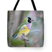 Perched Gouldian Finch Tote Bag by Glennis Siverson
