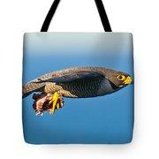 Peregrine Falcon 2 Tote Bag by Michael  Nau