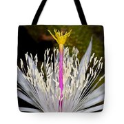 Pink And Yellow Pistil Tote Bag by Kelley King