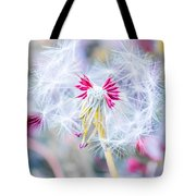 Pink Dandelion Tote Bag by Parker Cunningham