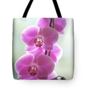 Pink Orchids Tote Bag by Kicka Witte - Printscapes