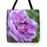 Pink Rose Flower Tote Bag by Frank Tschakert