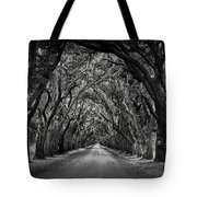 Plantation Oak Alley Tote Bag by Perry Webster
