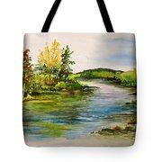 Plein Air At Grand Beach Lagoon Tote Bag by Joanne Smoley