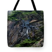 Point Lobos Veteran Cypress Tree Tote Bag by Charlene Mitchell
