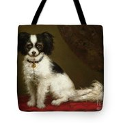 Portrait Of A Spaniel Tote Bag by Anonymous